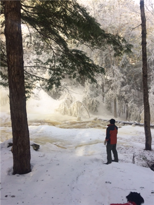 Hayes Falls- Winter