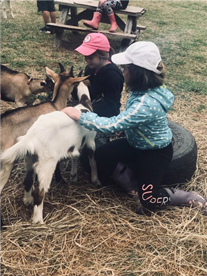 A Day on the Farm at Blue Moon Acres 2018